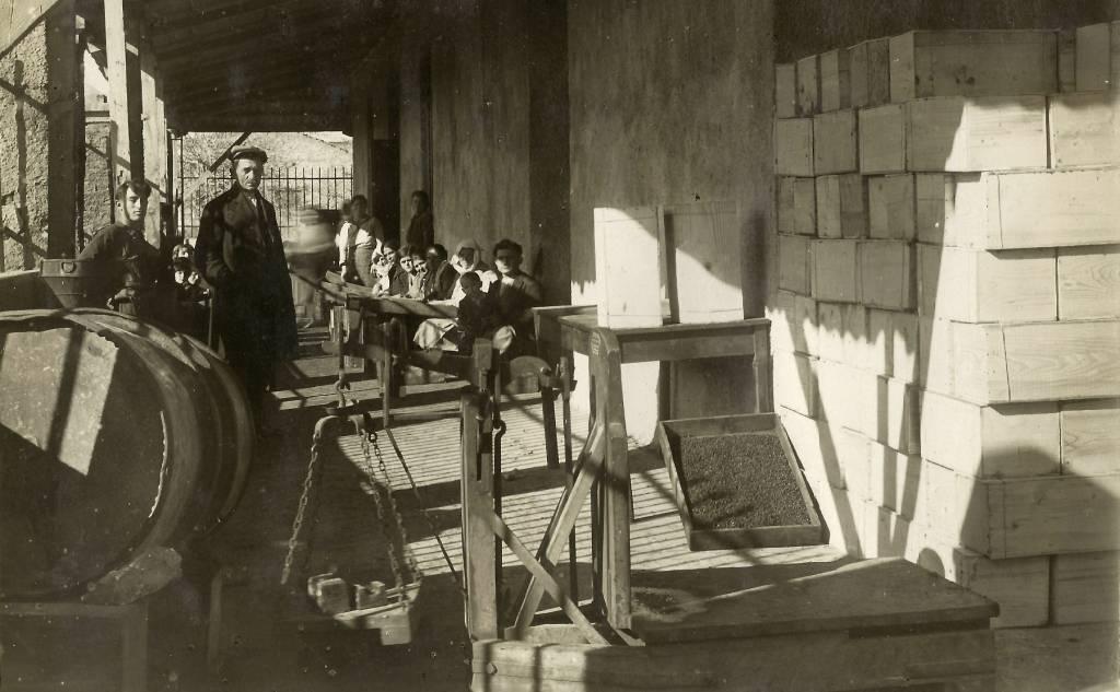 Διαλογή Σταφίδας στη Μαραθούπολη, 1932