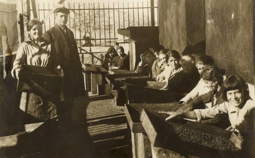 Φωτογραφικό Λεύκωμα Τριφυλίας, 1932