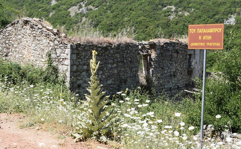At the Papa Lampros' backyard… (famous traditional song)