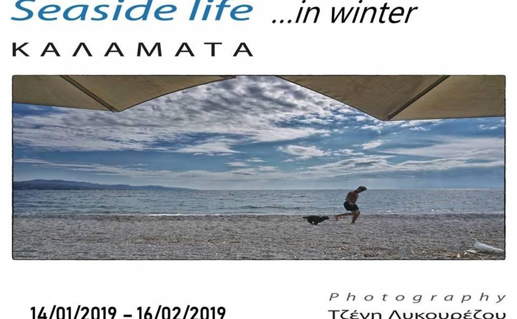 Seaside life in winter
