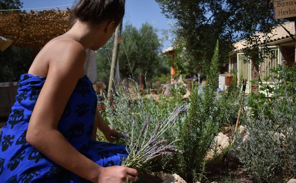 Σκιάχτρο Eco Farm
