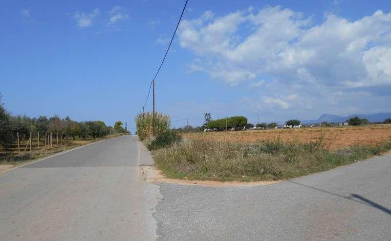 Οικόπεδο επί της επαρχιακής οδού Μαραθόπολης - Πύλου