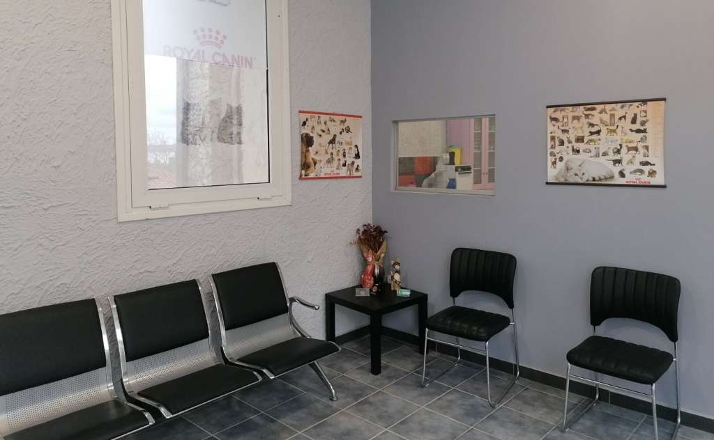 Veterinary Clinic – Maria Panagopoulou (Pylos)