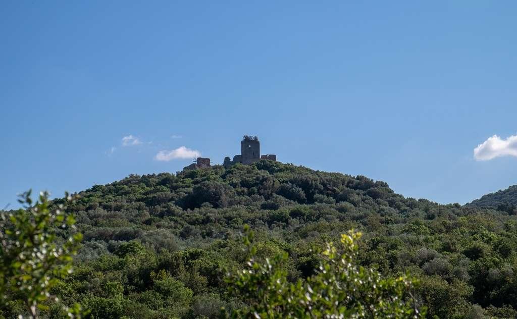 Κάστρο του Μίλα