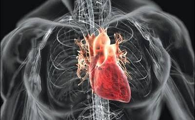 Spyros Simos -Cardiologist MD