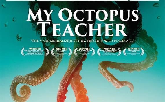 Νέα Κινηματογραφική Λέσχη Καλαμάτας -Ο ΔΑΣΚΑΛΟΣ ΜΟΥ ΤΟ ΧΤΑΠΟΔΙ – MY TEACHER, OCTOPUS