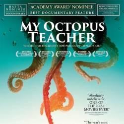 NewKalamata Cinema Club -MY TEACHER, OCTOPUS