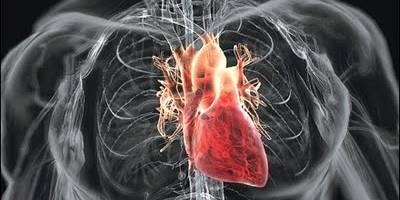 Σπύρου Σίμος - Καρδιολόγος MD